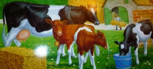 mommy cow and calves
