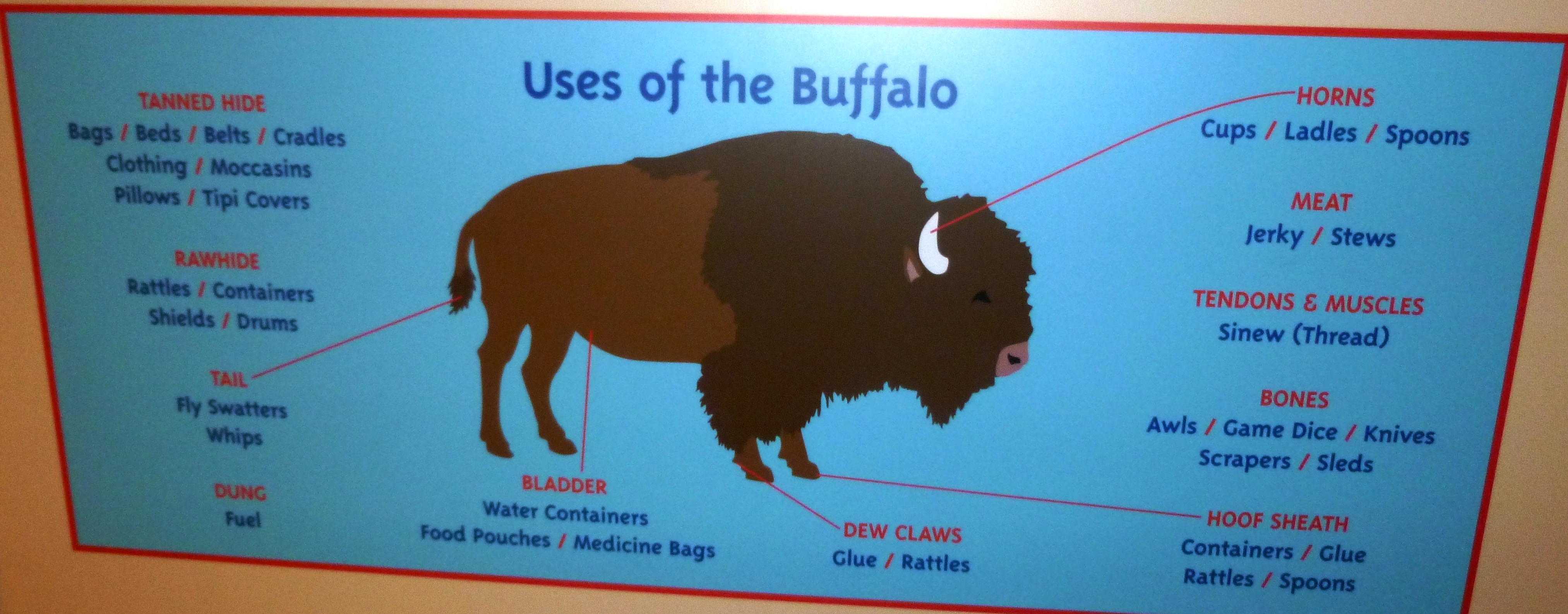 buffalo uses Buffalo chips definition, the dried dung of buffalo used as fuel, especially by early settlers on the western plains see more.